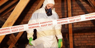 Asbestos Abatement - Reference Materials & Resources