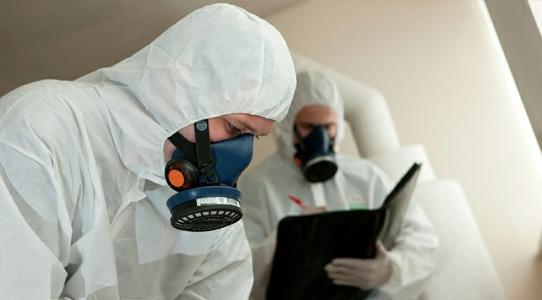 Types of Asbestos Surveys in Ireland